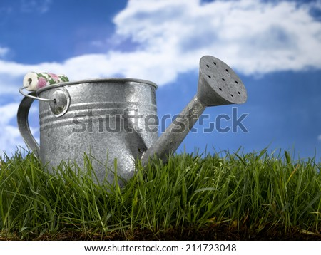 Field with blue sky and watering can - stock photo