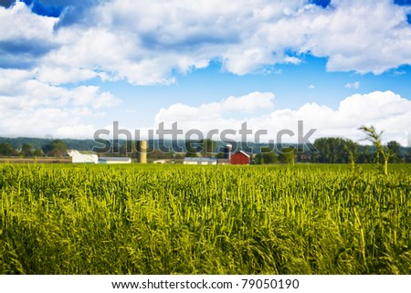 Field with Blurry Farm Buildings in the background - stock photo