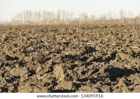 field with cracked soil