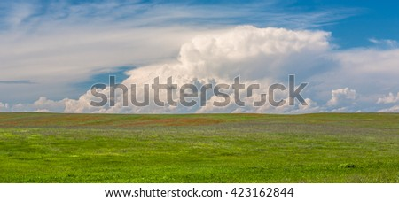 field with flowers and sky with clouds - stock photo