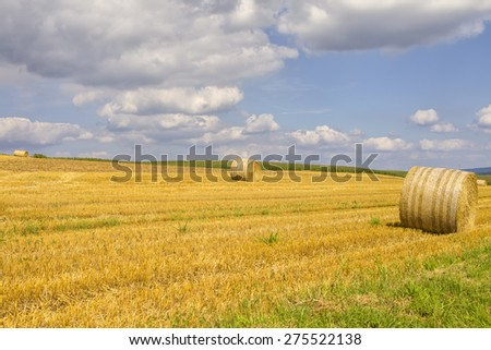 Field with harvested hay bales  - stock photo