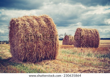 Field with hay bales in cloudy weather - stock photo