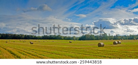 Field with hay harvest in autumn. - stock photo