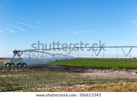 Field with irrigation system