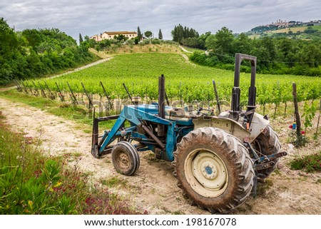 Field with vines and old tractor in Tuscany