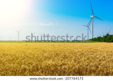 Field with wheat and eco power, wind turbines