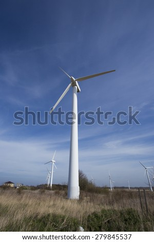 field with wind electric generators