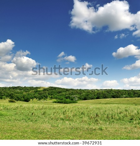 field, wood, blue sky and clouds