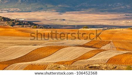 Fields and hills of Castilla-La Mancha, Spain at winter - stock photo