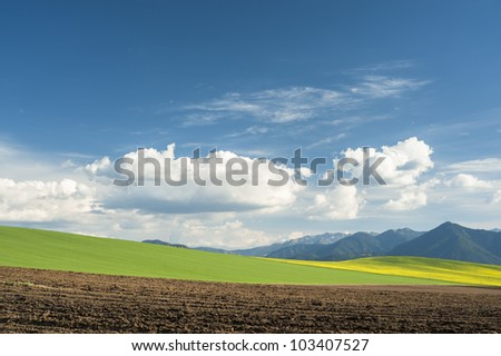 Fields and mountains in a spring day