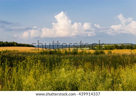 fields and sky