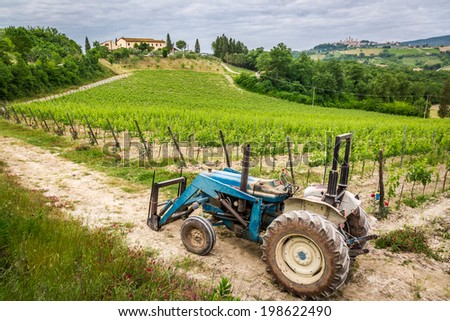 Fields full of vines and blue tractor in Tuscany - stock photo