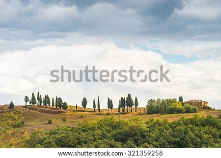 Fields in Tuscany - stock photo