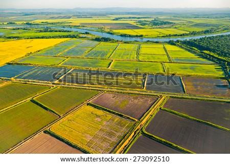 Fields of Krasnodar Krai, top view - stock photo