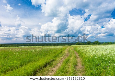 Fields of Sunlight On a Country Lane  - stock photo