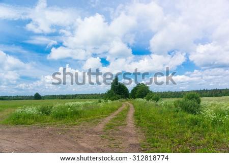 Fields of Sunlight Way Ahead  - stock photo