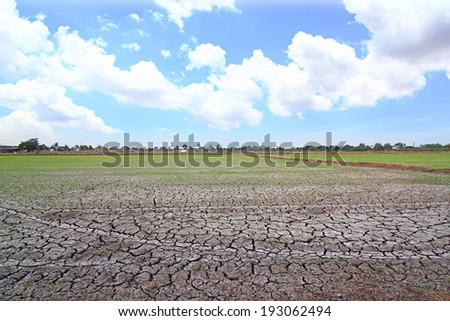 Fields parched soil - stock photo