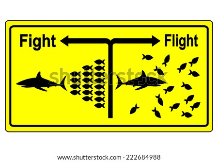 Fight or Flight. Business metaphor for team building and joint struggle in hard times instead of giving up one by one - stock photo