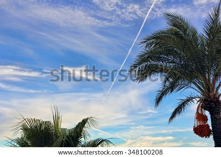 Fighter aircraft fuel trace in the turkish blue cloudy sky over palm trees. - stock photo