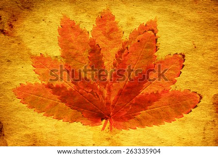 figure of autumn leafs on the vintage paper - stock photo