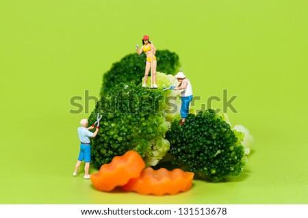 Figurine farmers harvesting giant broccoli - stock photo