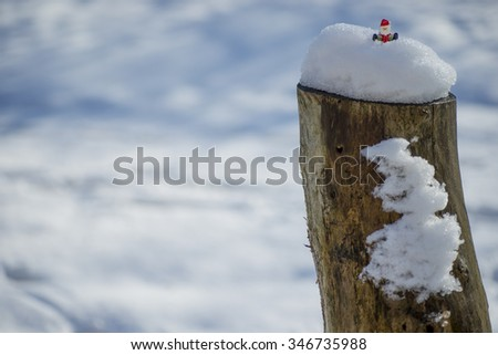 Figurine of Santa Claus sitting in the snow covered trunk of tree on the blurred snowy background