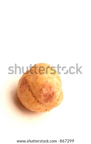 filbert hazel nut detail with room for copy - stock photo