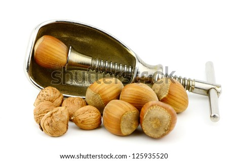 filberts or hazelnuts and a nut cracker in the studio  Good source of essential nutrients. - stock photo