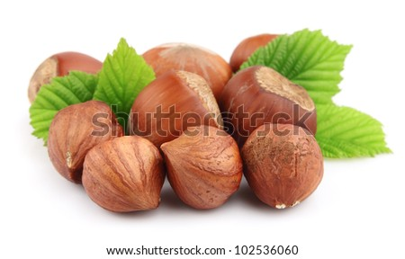 filberts with leaves on a white - stock photo