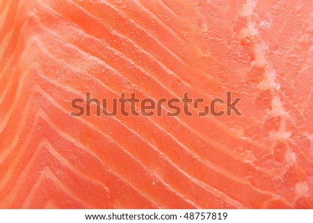 Fillet of a salmon