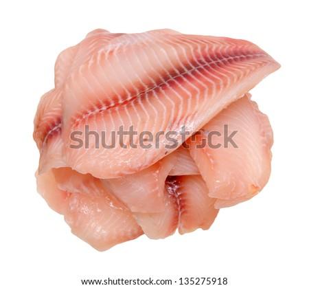 filleted  fresh tilapia on white - stock photo