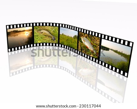 Film roll with color pictures (nature) on white background. All pictures are my own photos.  - stock photo
