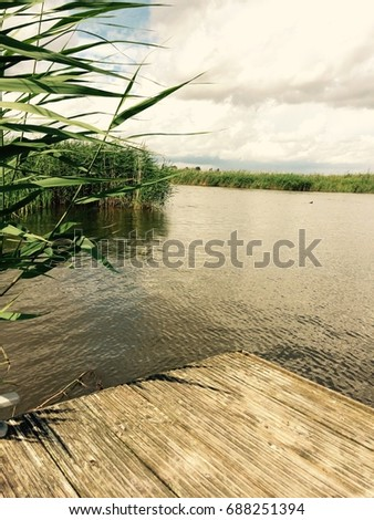 Filtered mobile image of a wooden pontoon on a reed lined waterway