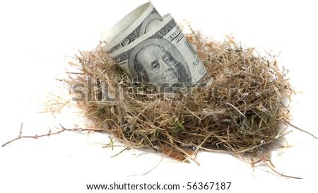 Financial Nest Egg concept $100.00 (one hundred dollar bills)    inside a bird nest - stock photo