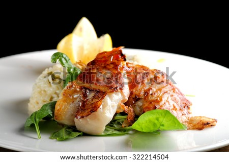 Fine dining, fish fillet breaded in herbs and spice on vegetable risotto. - stock photo