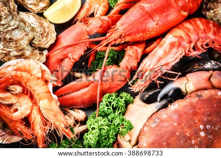 Fine selection of crustacean for dinner. Lobster, crab and jumbo shrimps and oysters on dark background