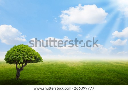 Fine weather with green tree, sky cloud and grass