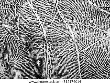 Fingerprint on white paper - stock photo