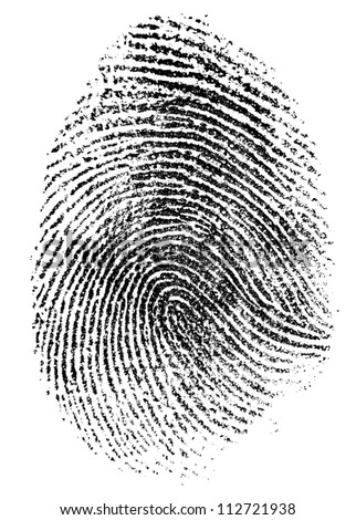 fingerprint pattern isolated on white - stock photo