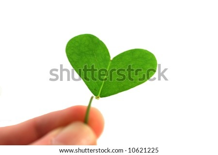 fingers holding a clover heart on a white background - stock photo