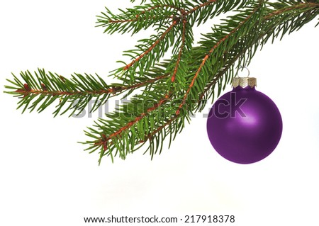 fir branch with Christmas ball