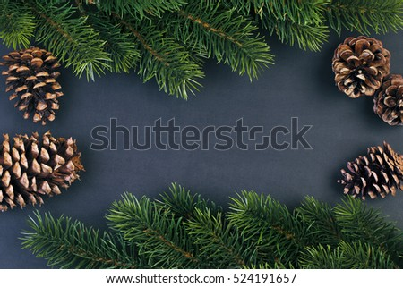 Fir branches and cones on black background