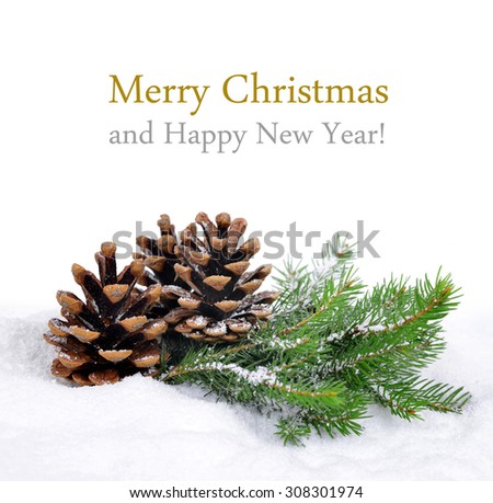 Fir branches with cones. Merry Christmas card.
