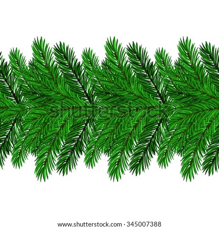Fir Green Branches Isolated on White Background