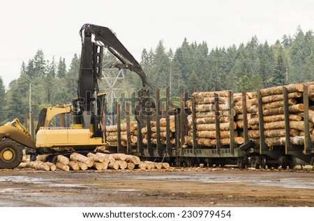 Fir logs being loaded onto railroad rail cars for transport to the mill in Oregon - stock photo