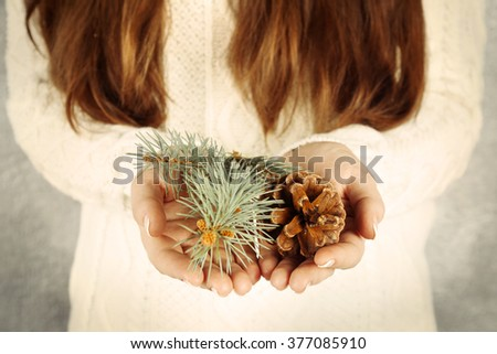 Fir tree branch and pine cone in woman hands, closeup - stock photo
