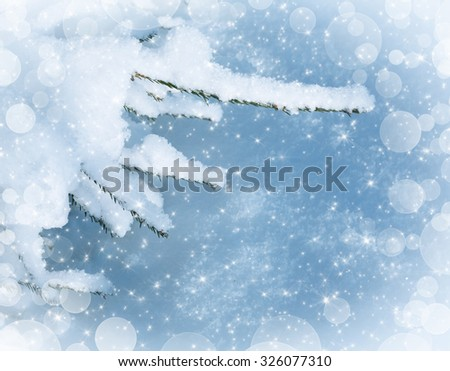 Fir tree branch covered with snow in winter day - stock photo
