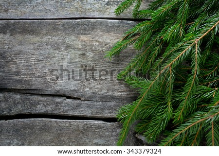 fir tree branch on wooden surface - stock photo