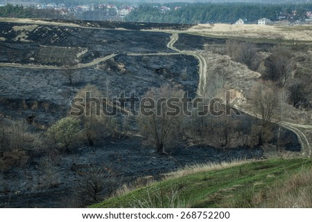 fire and smoke in the forest - stock photo