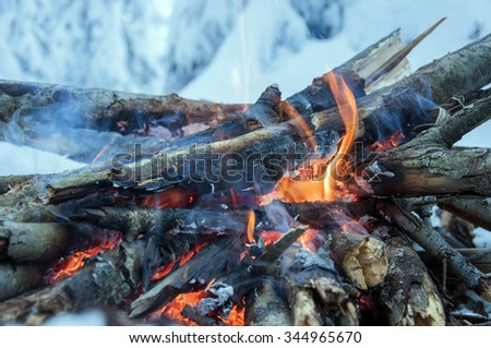 Fire burns in the snow in the woods, on a background of snow-covered firs, - stock photo